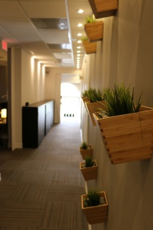 We enjoy Miami's great light inside our offices as well.